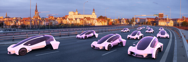 Vision of the future of fully automated, unified road transport
