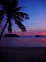 Photo sur Aluminium Dauphins Scenic View Of Sea At Sunset