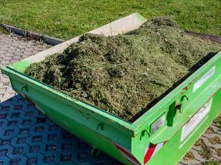 Container mit Gras Grünpflege im Park