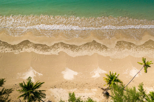 Top down aerial view of a beautiful, empty tropical sandy beach surrounded by palm trees