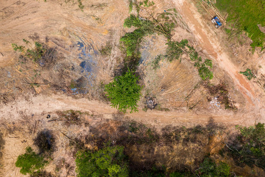 Aerial view of deforestation of a tropical rainforest to make way for logging and palm oil plantations contributing to climate change and global warming