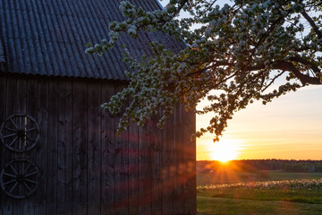 Sunset in a country side