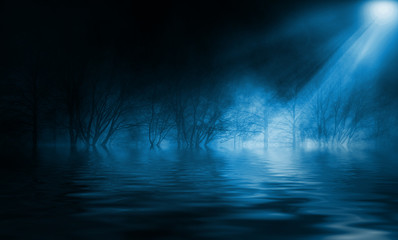 Reflection of the full moon on the water. Dark dramatic background. Moonlight, smoke and fog Wall mural
