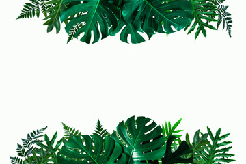 Wall Mural - Green leaves nature frame layout of tropical plant bush (monstera, palm, philodendrons, ferns) on white background, flat lay