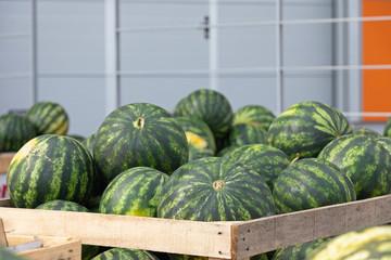 Watermelons Produce Market