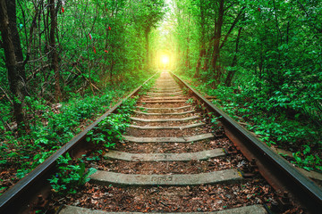Papiers peints Vert a railway in the spring forest. Tunnel of Love, green trees and the railroad