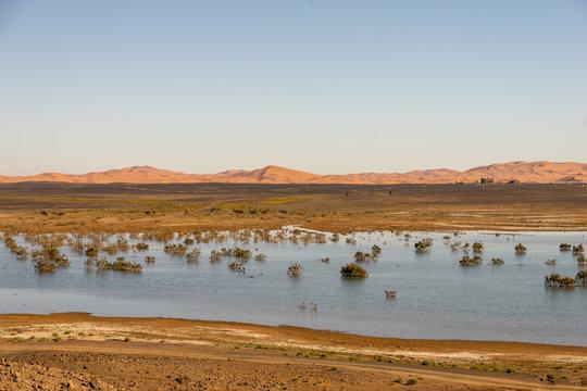 lake desert Morocco