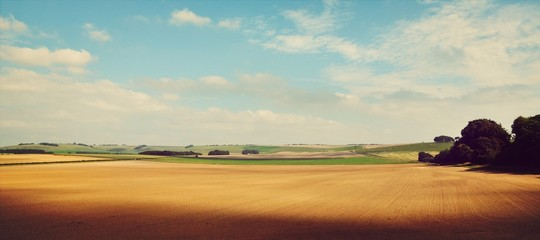 Panoramic Shot Of Agricultural Landscape Fototapete