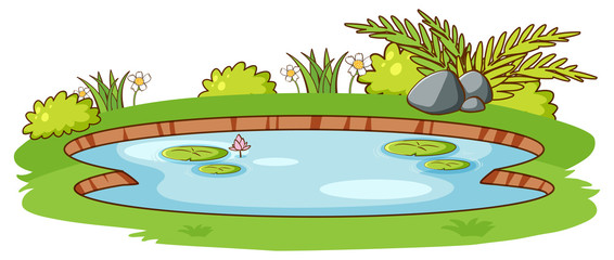 Wall Mural - Small pond with green grass on white background