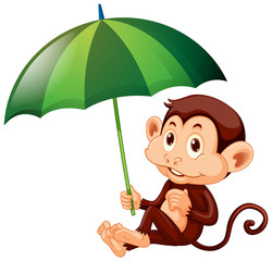 Keuken foto achterwand Kids Cute monkey with green umbrella on white background
