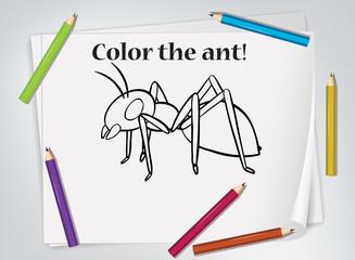 Keuken foto achterwand Kids Children ant coloring worksheet