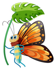 Keuken foto achterwand Kids Buttefly holding green leaf on white background