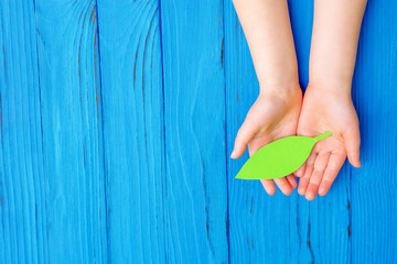 Top view of hands of child holding green leaf on wooden blue background. Copy space. Concept of environmental protection and Earth day.
