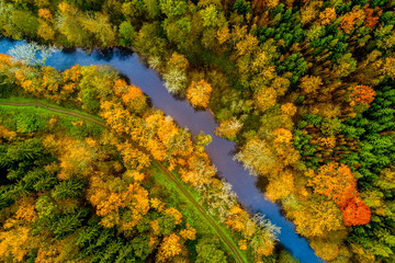 Aerial view of the river Elbe in the mixed autumn forest, neighbouring a path near Kuks, Czech Republic.