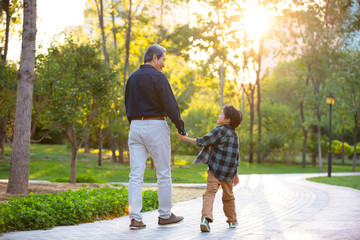 Happy grandfather and grandson walking in park
