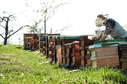 Beekeeper blowing smoke over beehives on field against sky
