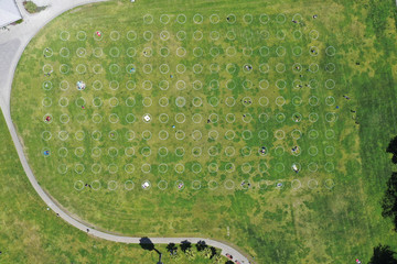 Sunbathers lie in circles marked on the grass to aid in social distancing in San Francisco