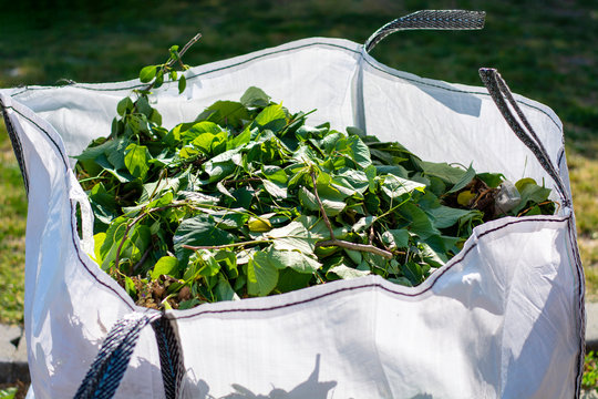 Large white rental bag with organic green garden waste. Local councils collecting green waste to process it into green energy and compost.