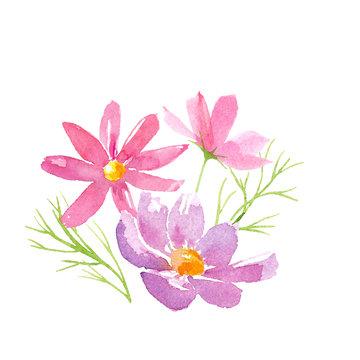 コスモスの花のアレンジメント。水彩イラストのトレースベクター