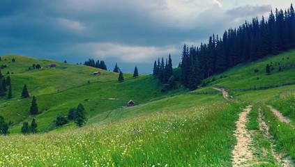 Wall Mural - Summer mountain landscape