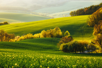 Wall Mural - Tranquil rural landscape in sunbeams. Location place of South Moravia, Czech Republic, Europe.