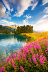 Wall Mural - Majestic view of the azure pond Champfer. Location place Silvaplana village, Swiss alps,