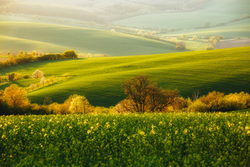 Wall Mural - Majestic rural landscape in sundeams. Location place of South Moravia, Czech Republic.