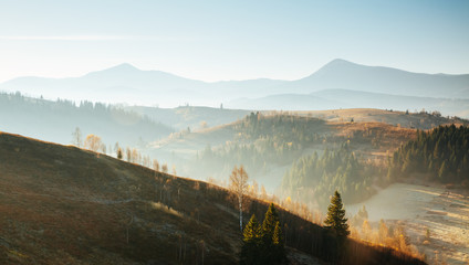 壁紙(ウォールミューラル) - Beautiful sunny day in picturesque mountain landscape. Location place of Carpathian mountains, Ukraine.