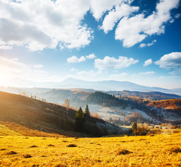 Wall Mural - Beautiful sunny day in picturesque mountain landscape. Location place of Carpathian mountains, Ukraine.