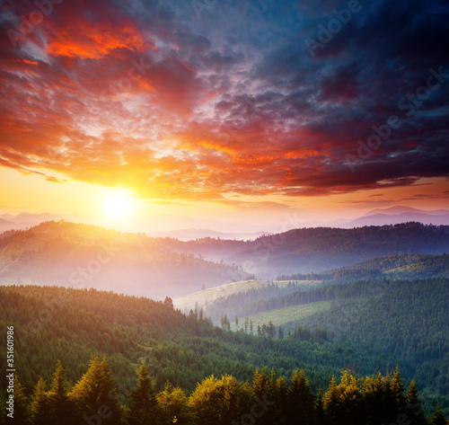Wall mural Perfect morning moment in alpine valley. Location place of Carpathian mountains, Ukraine.
