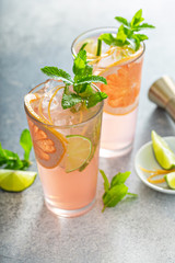 Grapefruit and lime mojito, refreshing summer drink with fresh mint