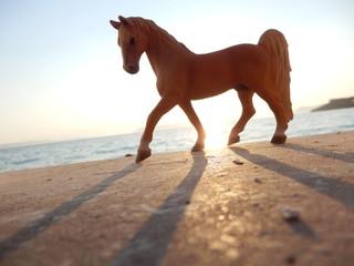 Miniaturowy koń