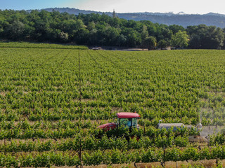 Farm tractor spraying pesticides and insecticides herbicides over green vineyard field. Napa Valley, Napa County, California, USA. April 5th, 2020