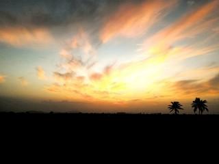 Foto auf AluDibond Gelb Schwefelsäure Scenic View Of Silhouette Landscape Against Sky At Sunset
