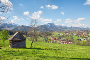 View of the Tatra Mountains from the meadow in the vicinity of Zakopane, Poland
