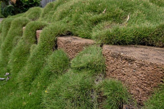 A brick landscaped wall has grass growing over it