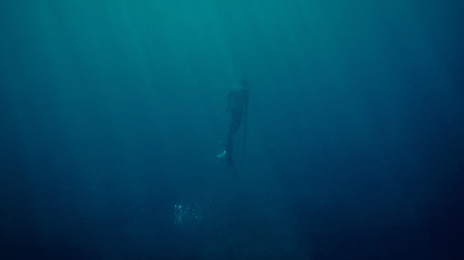freediver ascending while spearfishing