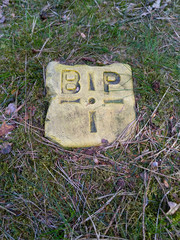 Letters GDP BIP on a stone