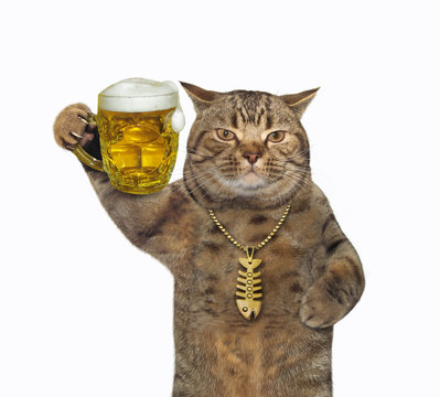 The beige cat in a gold fish-bone pendant is drinking light beer from a mug. White background. Isolated.