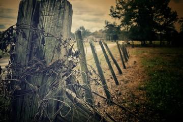 Foto auf Gartenposter Schokobraun Fence On Countryside Landscape