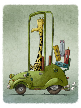 funny illustration of a giraffe driving a green old car.