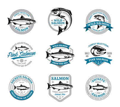 Salmon logo and design elements