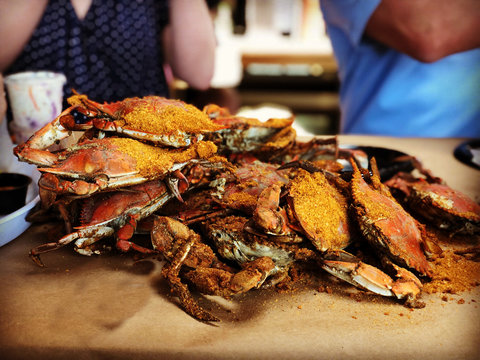 steamed Maryland blue crabs on a table
