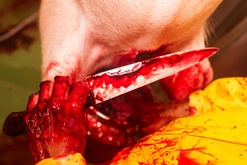 Killer Hand With Knife And Filled With Blood