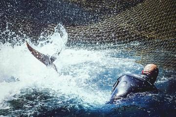 Obraz Rear View Of Man Catching Fish - fototapety do salonu