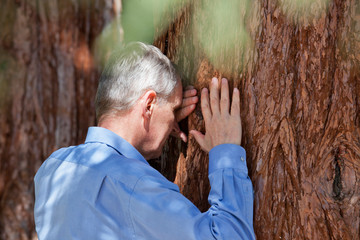 Senior businessman leaning on a tree trunk of a sequia