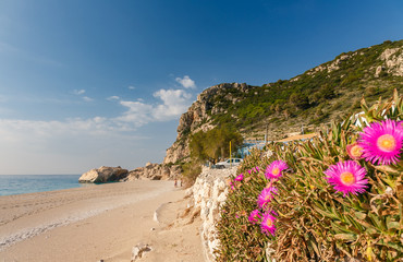 Fotomurales - A beautiful beach along the coastline in Kefelonya island, Greece, Europe
