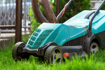 Cutting the grass with electric lawn mower.