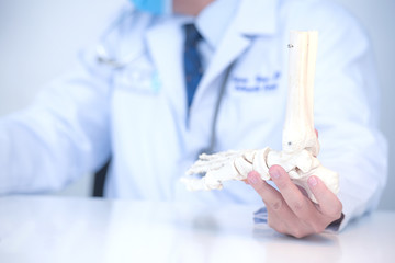 Orthopedic doctor in his office with the patient and the foot model orthopedic doctor in his office...