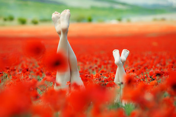 Beautiful legs on the nature. Two pairs of beautiful legs.